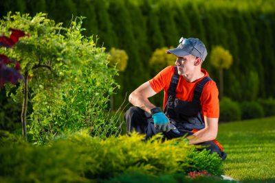 Charlotte Irrigation Systems - Backflow Repair 1